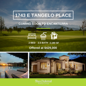 1743 Tangelo Place, San Tan Valley, AZ